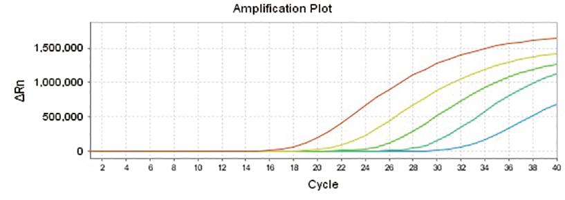 hcv-linearity